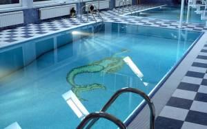 basen-w13